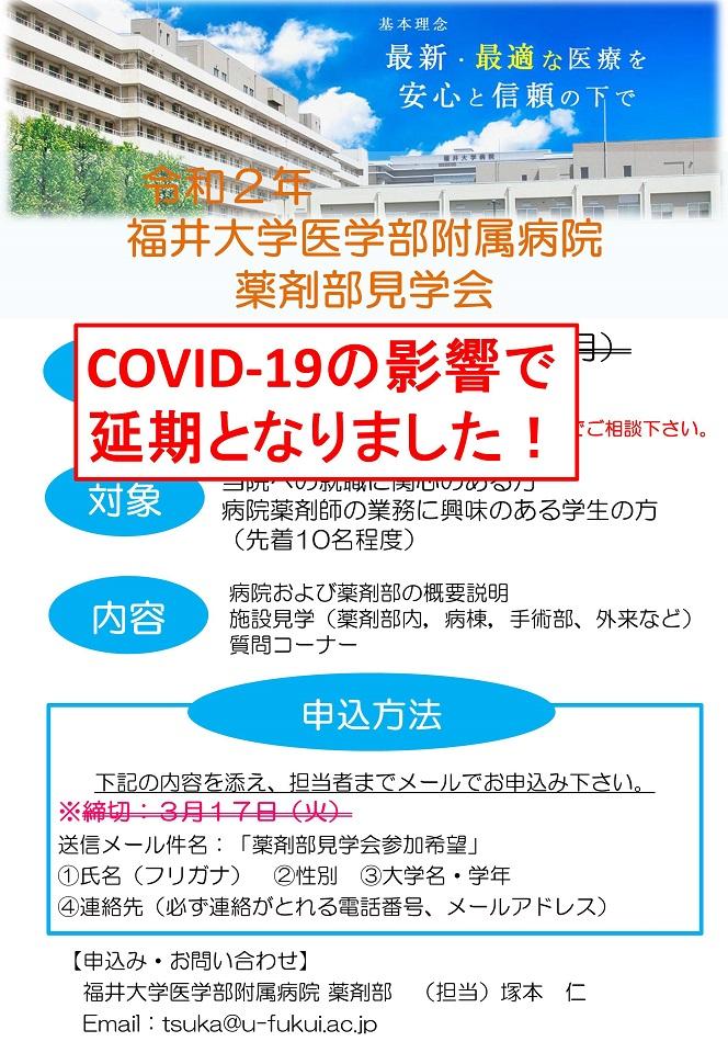 福井 コロナ ウィルス